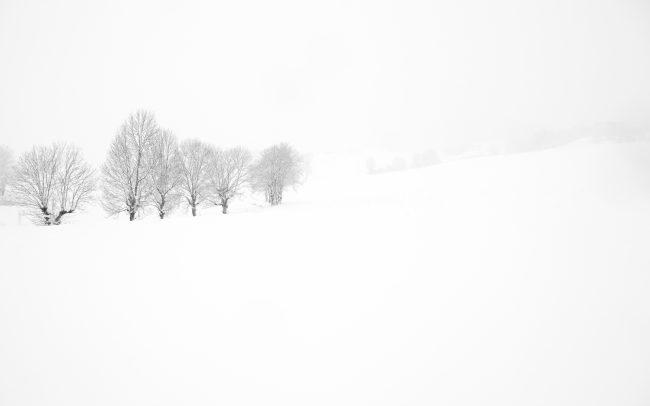 Concept, Montagne, Neige, Paysage